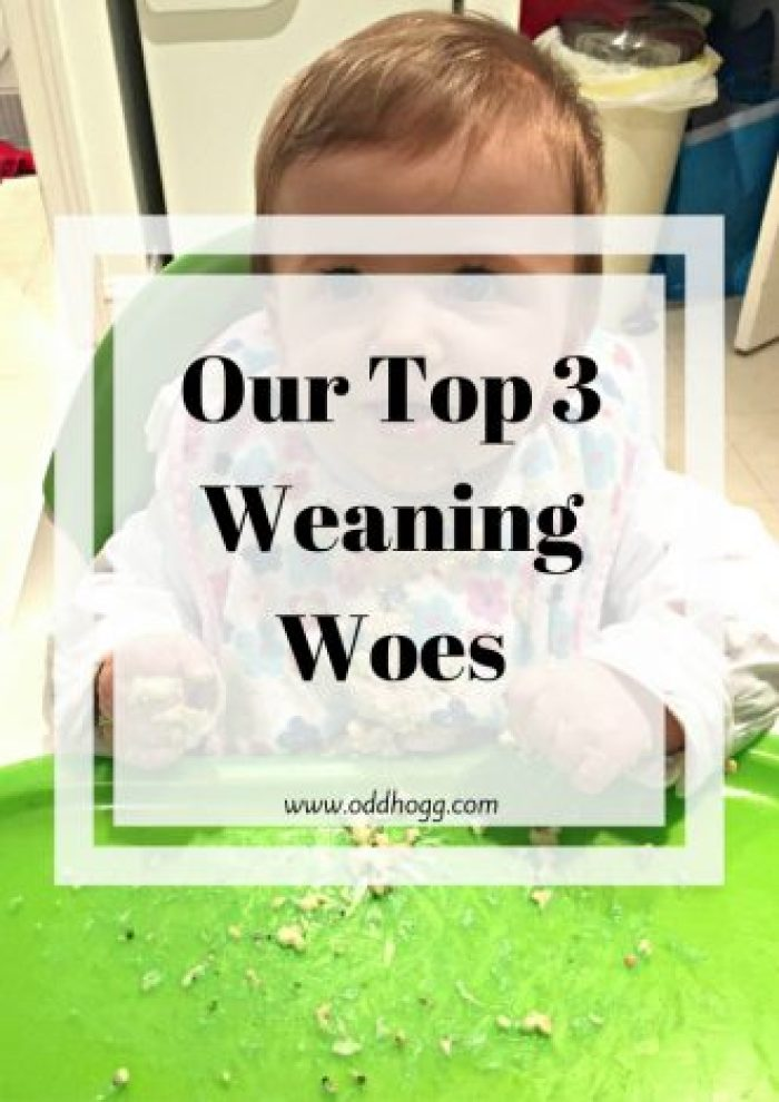 Our Top 3 Weaning Woes | Piglet has changed course rapidly with his weaning recently and it's driving me a little crazy. I KNOW I'm not alone in this, plenty mums and dads have been through this before - but that doesn't make it any less frustrating! http://oddhogg.com