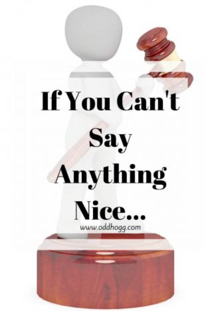 If you can't say anything nice... | People are really judgemental about circumstances they don't understand. I have written about a discussion I had with an elderly couple about crying children http://oddhogg.com