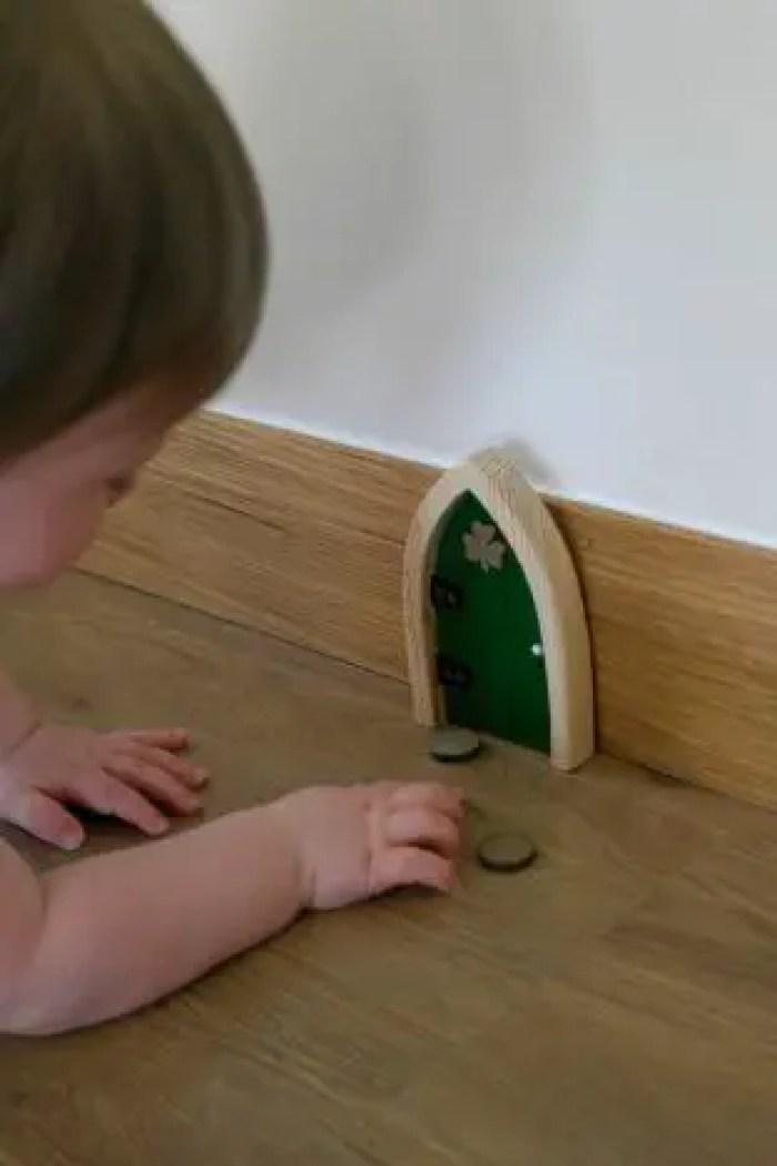 Irish Fair Door Review | Piglet Playing With The Door http://oddhogg.com