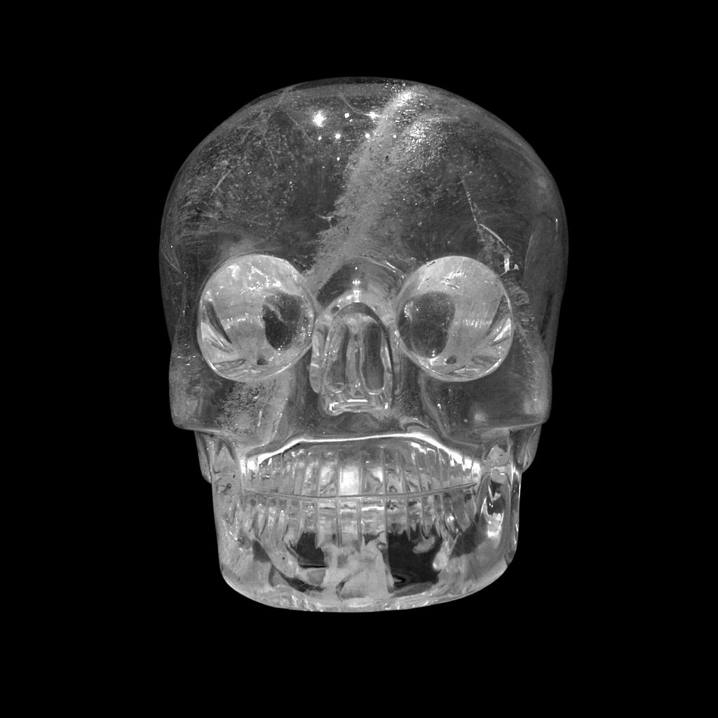 Skulls For Sale  OdditiesBizarrecom