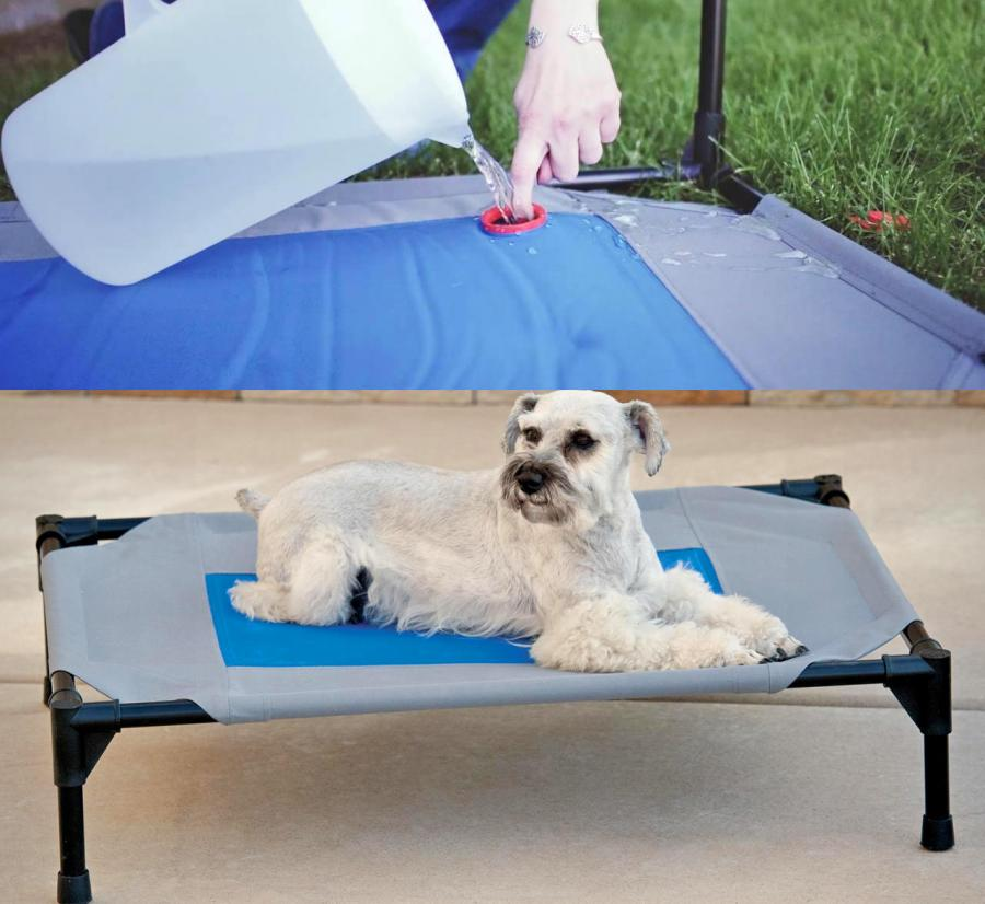 Cooling Outdoor Dog Bed Stores Cold Water To Keep Your