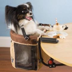 Dog High Chair Marc Newson You Never Know When Are Going To Need Have Your Sit Up By The Table With Rest Of Humans That S Why It Best Always