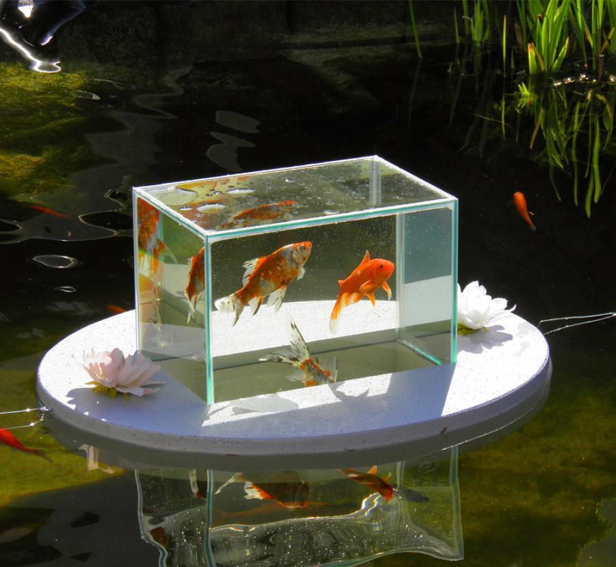 Fish Shop Dublin 12