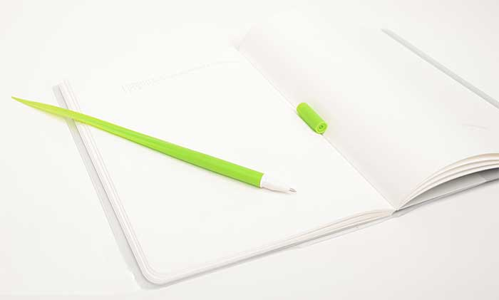 Grass Blade Shaped Pens 2