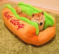 Hot Dog Dog Bed