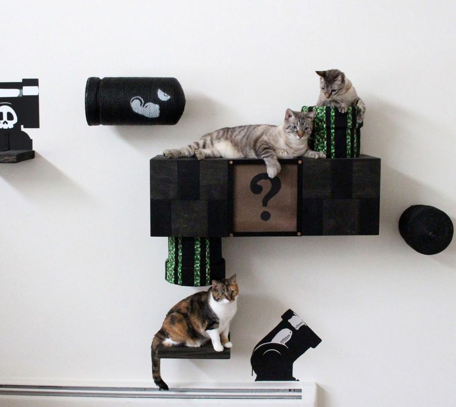 Mario Cat Playground