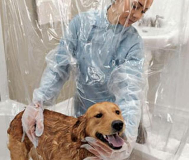 Pet Shower Curtain With Bubble Boy Arms