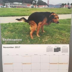 Kitchen Stuff For Sale Aid Hand Mixer Pooping Pooches Calendar 2017
