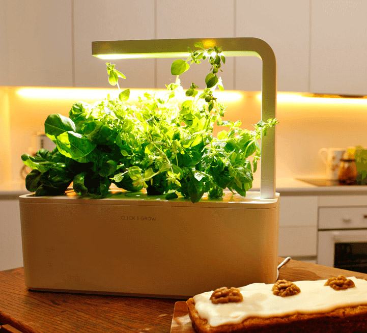 Kitchen Starter Kit