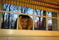 Scary Peeper: A Peeping Tom Figurine To Scare People