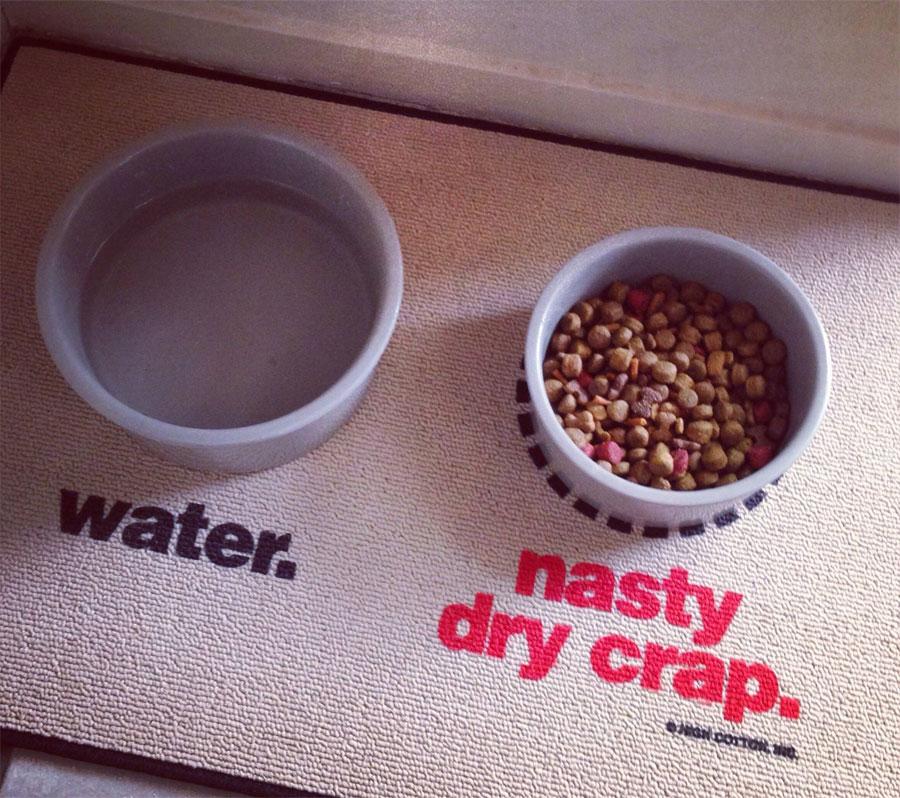 Water  Nasty Dry Crap Dog Mat