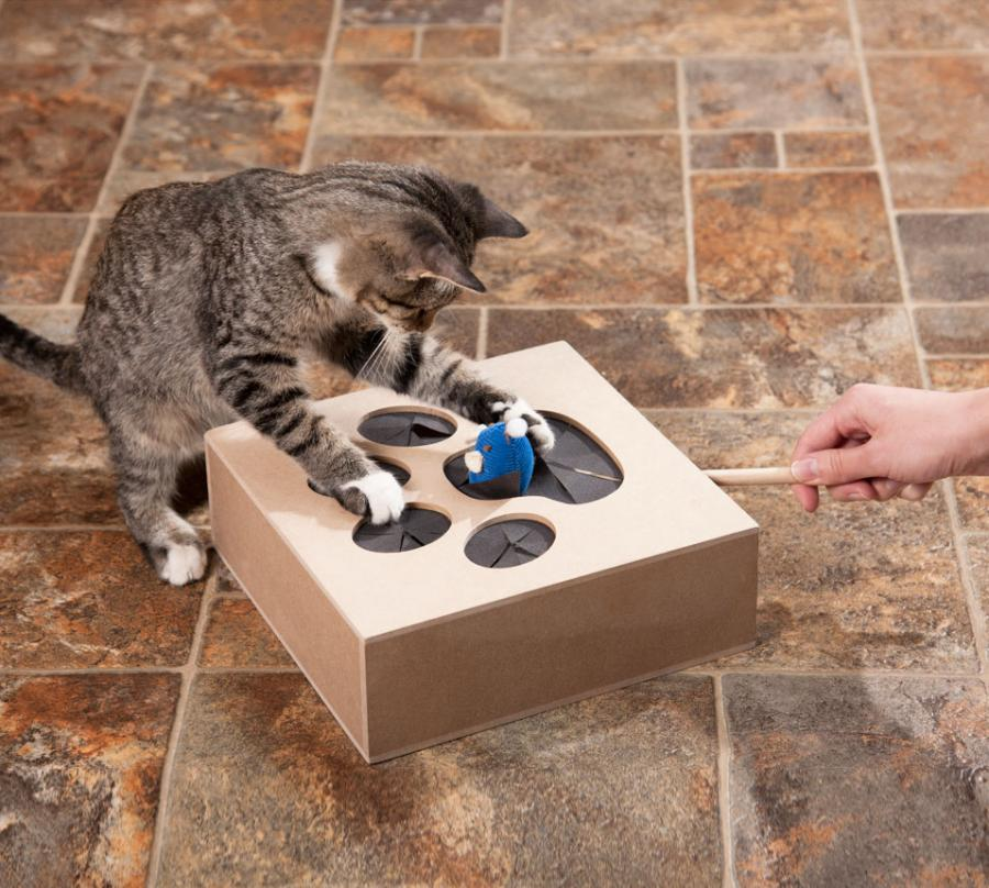 WhackAMouse Cat Toy