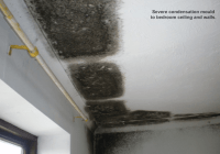 Condensation On Ceiling In Winter. Solving Your Winter