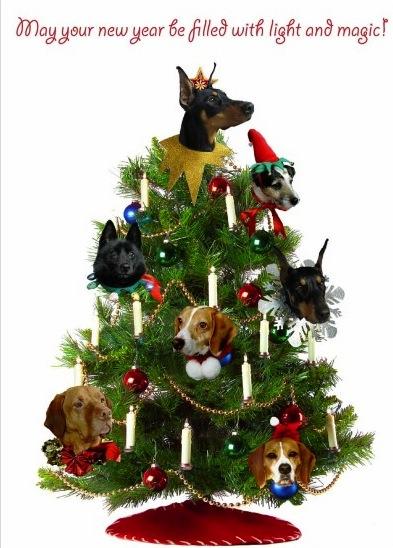 Ornaments 08