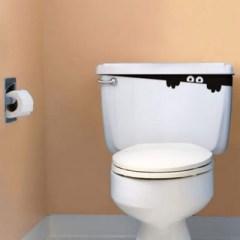 peek a boo toilet