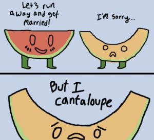 Cantaloupe pun
