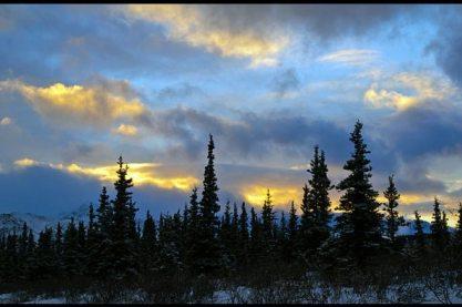 healy-winter-solstice