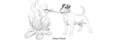Camp-Run-A-Pup