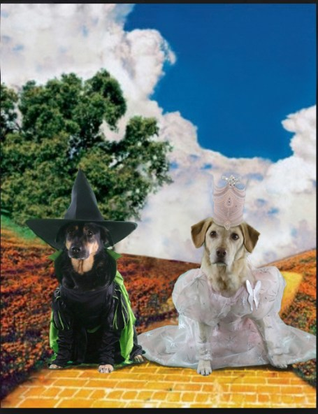 carly-and-hazel-wizard of oz