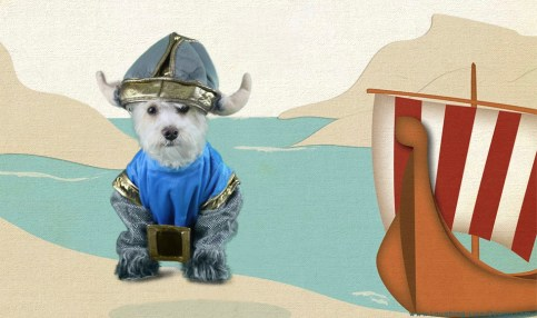 Viking Pet Costume