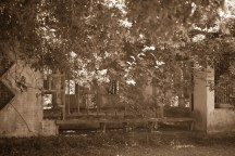 7Star Park - 06