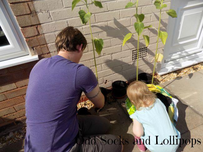 Garden Activities for Toddlers 7