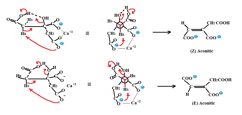 Non-Enzymatic Chemical Method for Dehydration of Citric