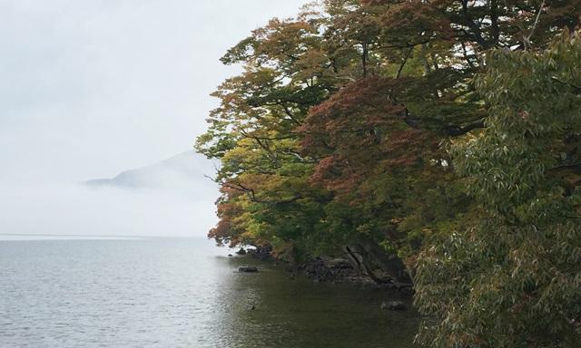 奥入瀬渓流 紅葉 服装