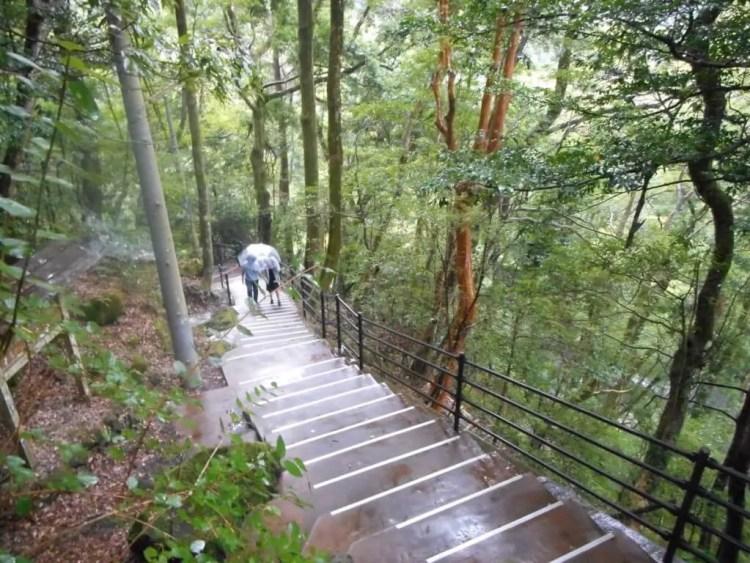 浄蓮の滝の階段