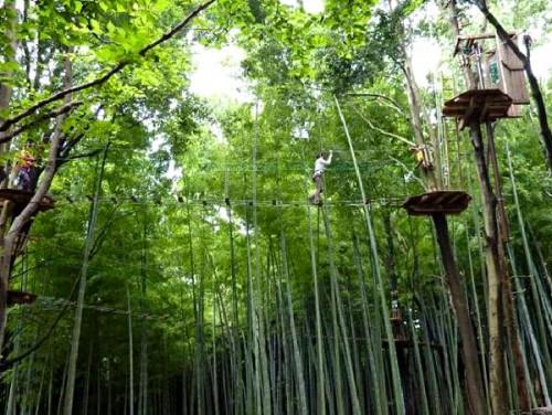 「フォレストアドベンチャー・軽井沢」で高原の森と遊ぼう!