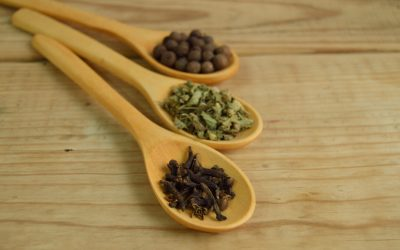 How We Will Travel With 7 Herbs And Spices For Cooking Abroad