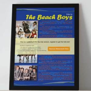 odesbookseries_Susan_Deller-beachboys
