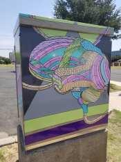 Downtown Odessa Box Art