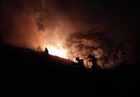 Os militares dos Bombeiros e trabalhadores da fazenda trabalharam por uma hora para conter as chamas Cortesia/CBM-AL