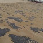 MPF: liminar determina implantação de medidas contra óleo em Alagoas