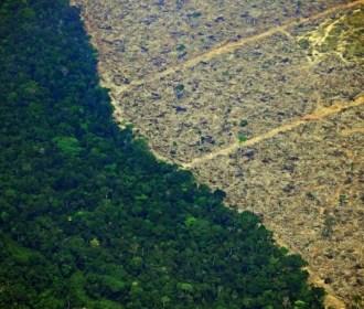 Desmatamento da Amazônia no Brasil bate recorde desde 2008