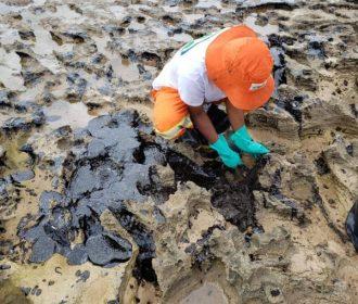 Capes vai liberar R$ 1,3 milhão para pesquisas sobre óleo em NE