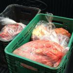 Denúncia aponta comercialização de carne de cavalo em Arapiraca