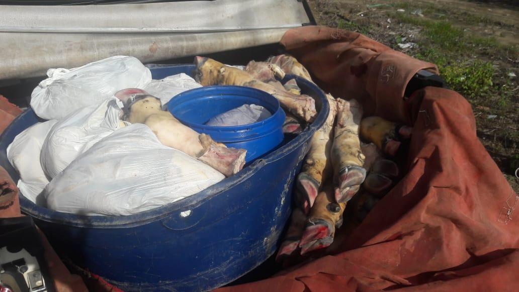Carga irregular foi apreendida durante uma operação em Rio Largo, AL - Foto: Divulgação/BPRv
