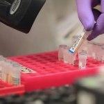 Alagoas vai realizar testes para identificar casos suspeitos do Covid-19