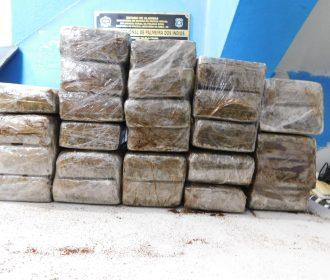 PM apreende droga avaliada em R$200 mil na zona rural de Arapiraca