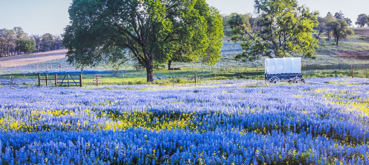 VRBO  Texas Hill Country US Vacation Rentals Reviews
