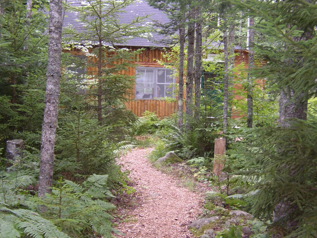 electric wheel chair rental and a half slipcover peaceful log cabin in the woods w/ view of ... - vrbo