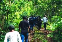Ecotourism Odisha -jungle_trek