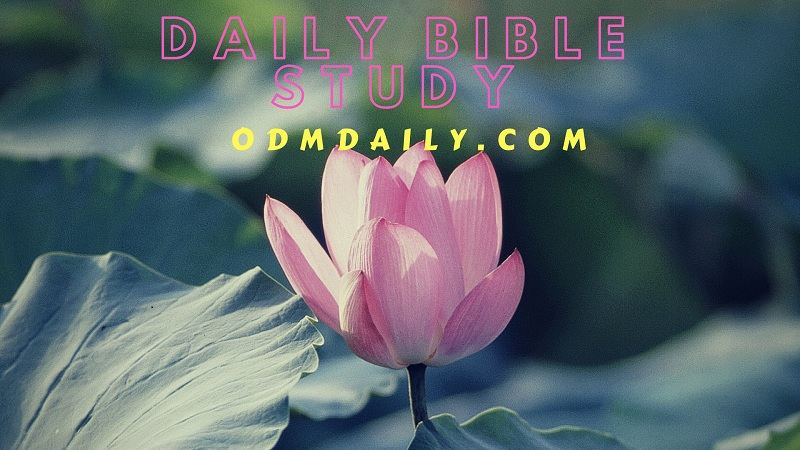 Our Daily Manna 24 September 2018