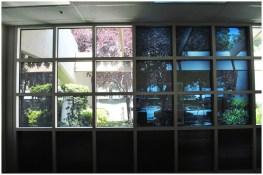 Электрохромные умные стекла