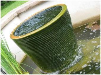 Образовавшиеся водоросли очищают воду