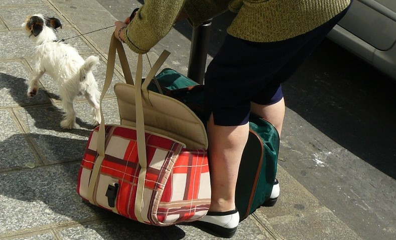 kradziez-torebka