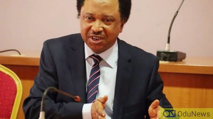 Shehu Sani Asked Me To Pay N5m To Bribe Judges - EFCC Witness Tells Court