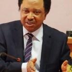 Shehu Sani Asked Me To Pay N5m To Bribe Judges - EFCC Witness Tells Court